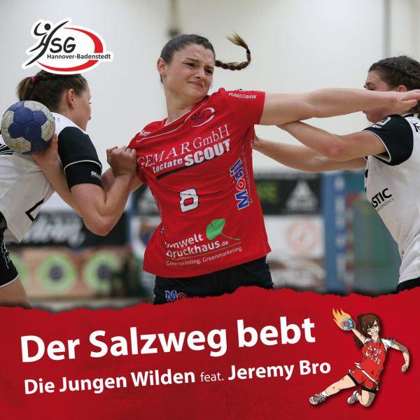 HSG_Salzweg_Cover