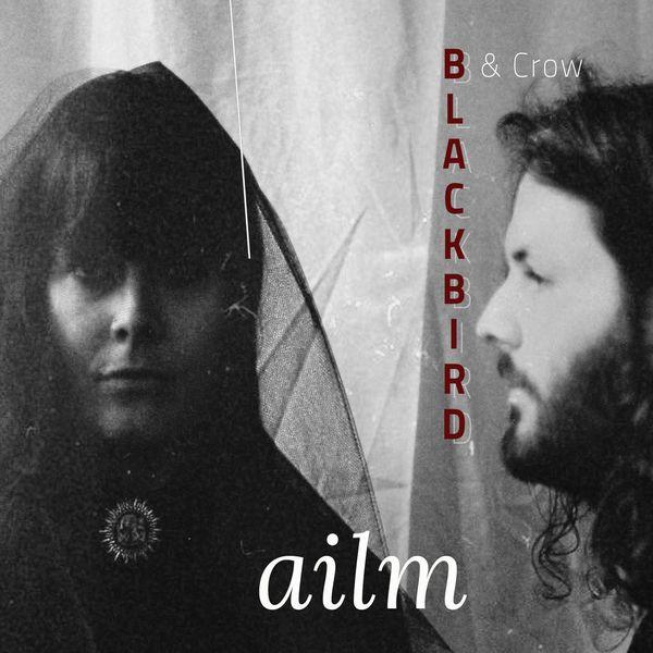 blackbird-crow_ailm